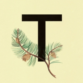 Trud - 1